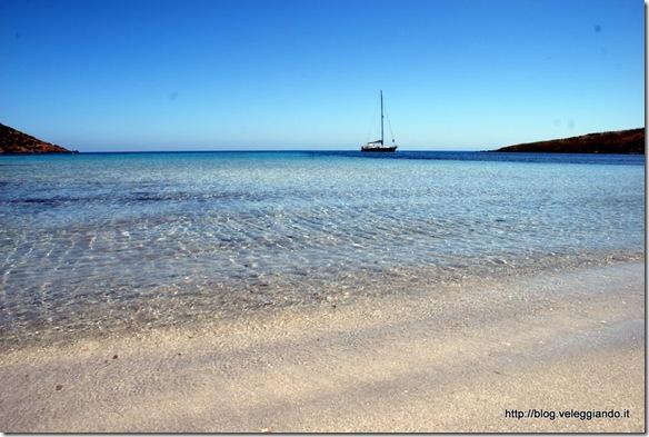 Aonami a Cala Trabuccato - Asinara