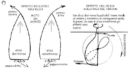 Effetto evolutivo