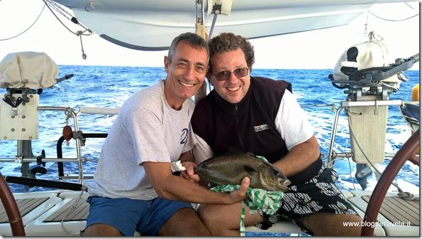 Pesca di una Ricciola in Atlantico