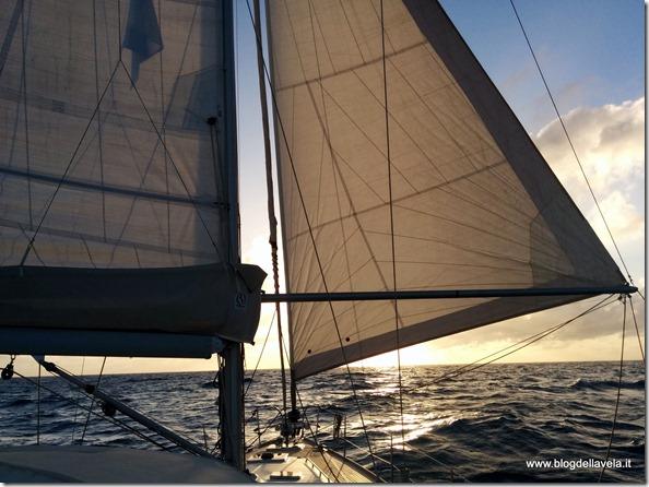 Navigazione oceanica con randa ridotta e genoa tangonato